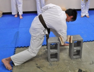 Knox student Nicholas Cheng, 1st Kyu, performs a knifehand board break