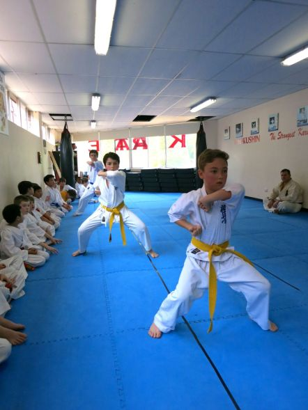 Knox Prep students perform kata