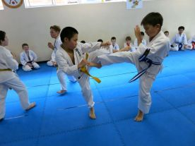 Knox Prep School Karate Grading, November 2013