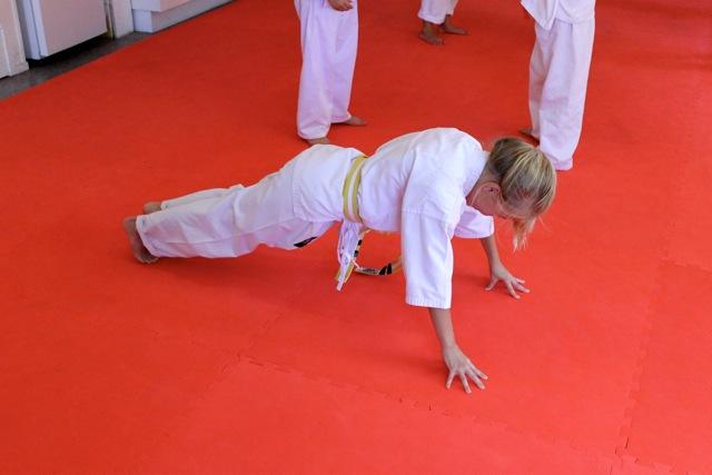 Aspley Dojo Karate Grading – March 15,2014