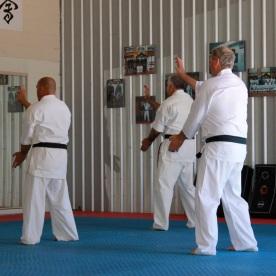 Yudansha Training 2014 3
