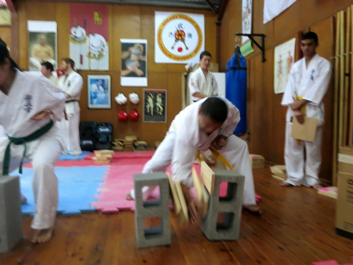 Bunkai & Tameshiwari Seminar – August 17,2014