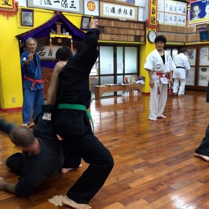 Japan2015Article1Sat1