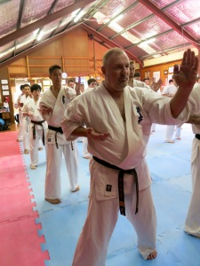 Sensei Paul Finnerty performing basics.