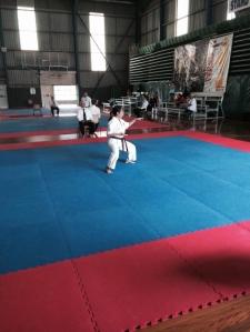 Trish performs Seienchin kata.