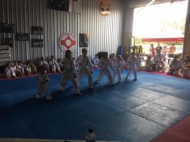 The Little Lions demonstrate moving through stance.