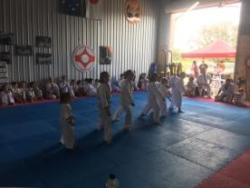 North Coast Little Lions in action.