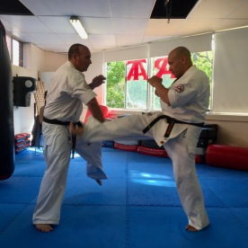 Sensei Jon Ellis blocks