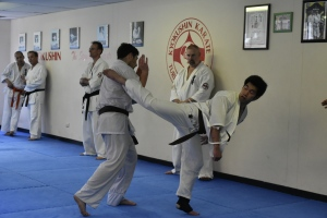 Sempai Jonathan during his 40 fights for Shodan.