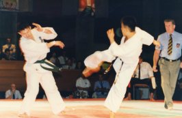 archive_1993-7