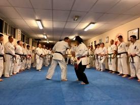 2018.09.21 Shihan Ken Seminar - 3