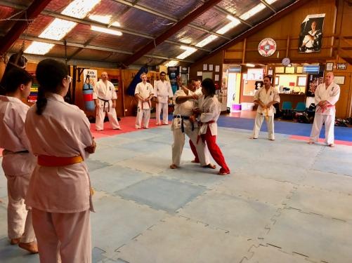 2018.09.22 Shihan Ken Seminar - 23