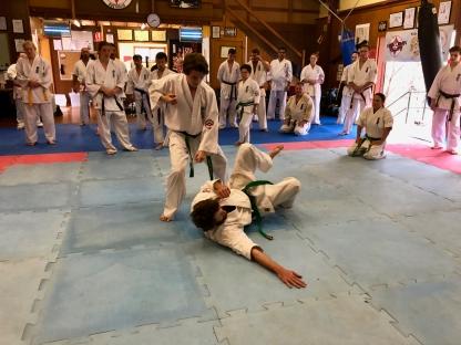 2018.09.23 Shihan Ken Seminar - 19